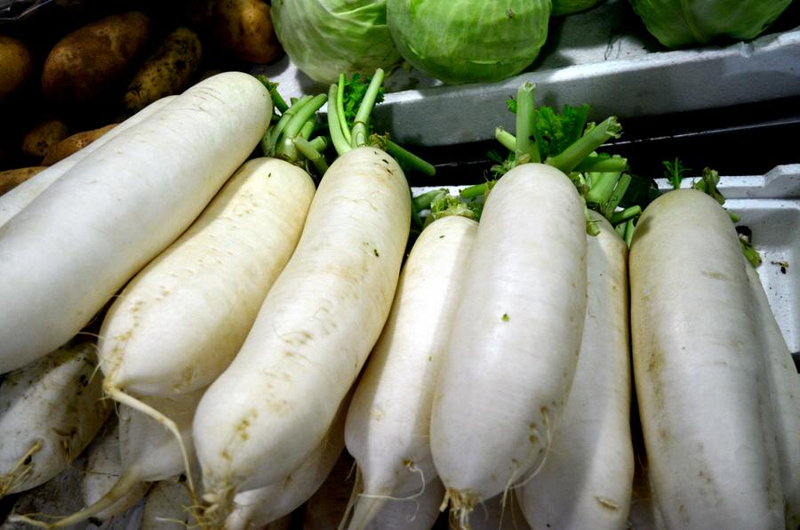 daikon Substitute For Celery Root